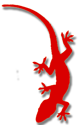 lizard 4 red
